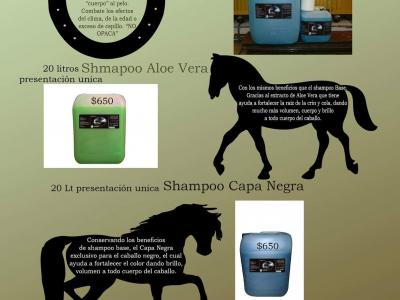 Productos Hipica Rivera